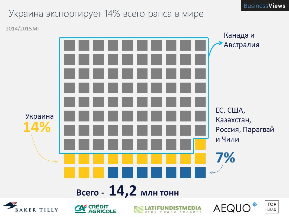 Украина экспортирует 14% всего рапса в мире