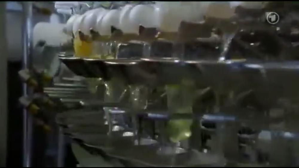 egg separation