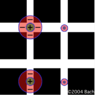 сетка Германа иллюзия
