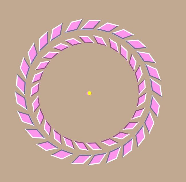 иллюзия с вращающимися кругами