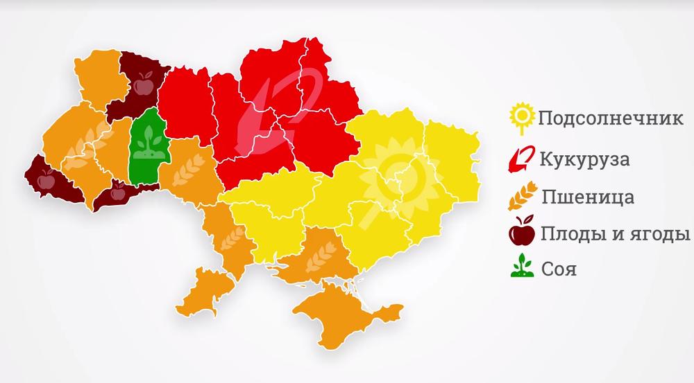 растениеводство в Украине структура