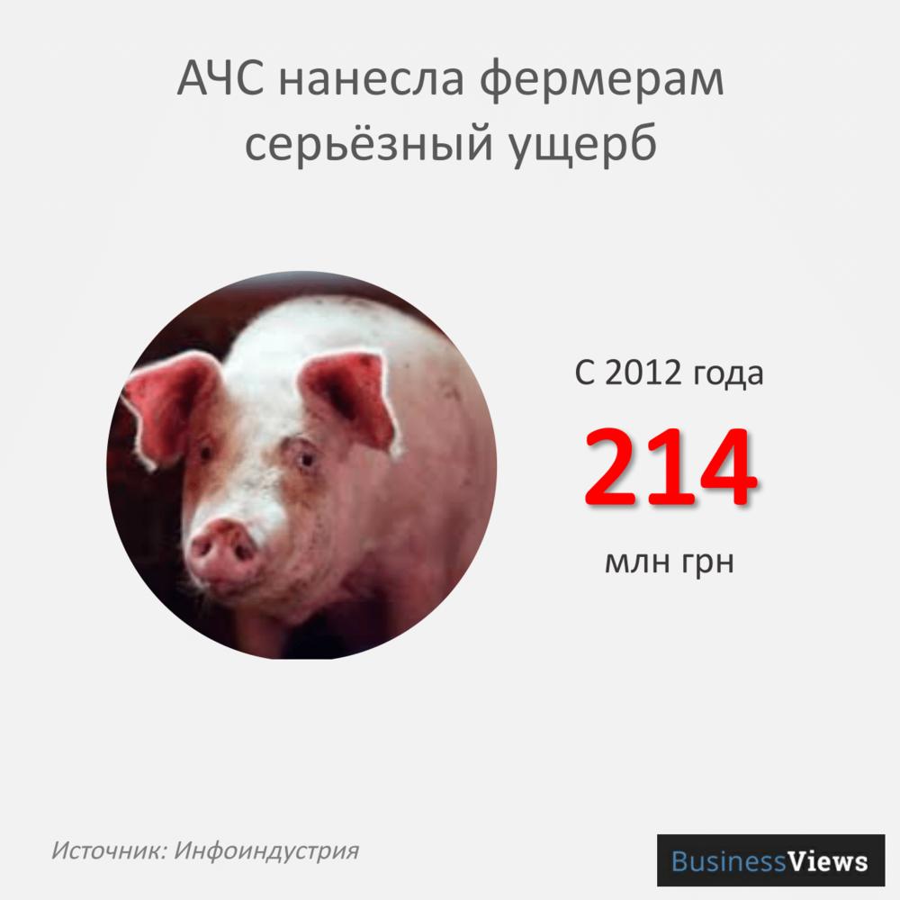 животноводство-07.png