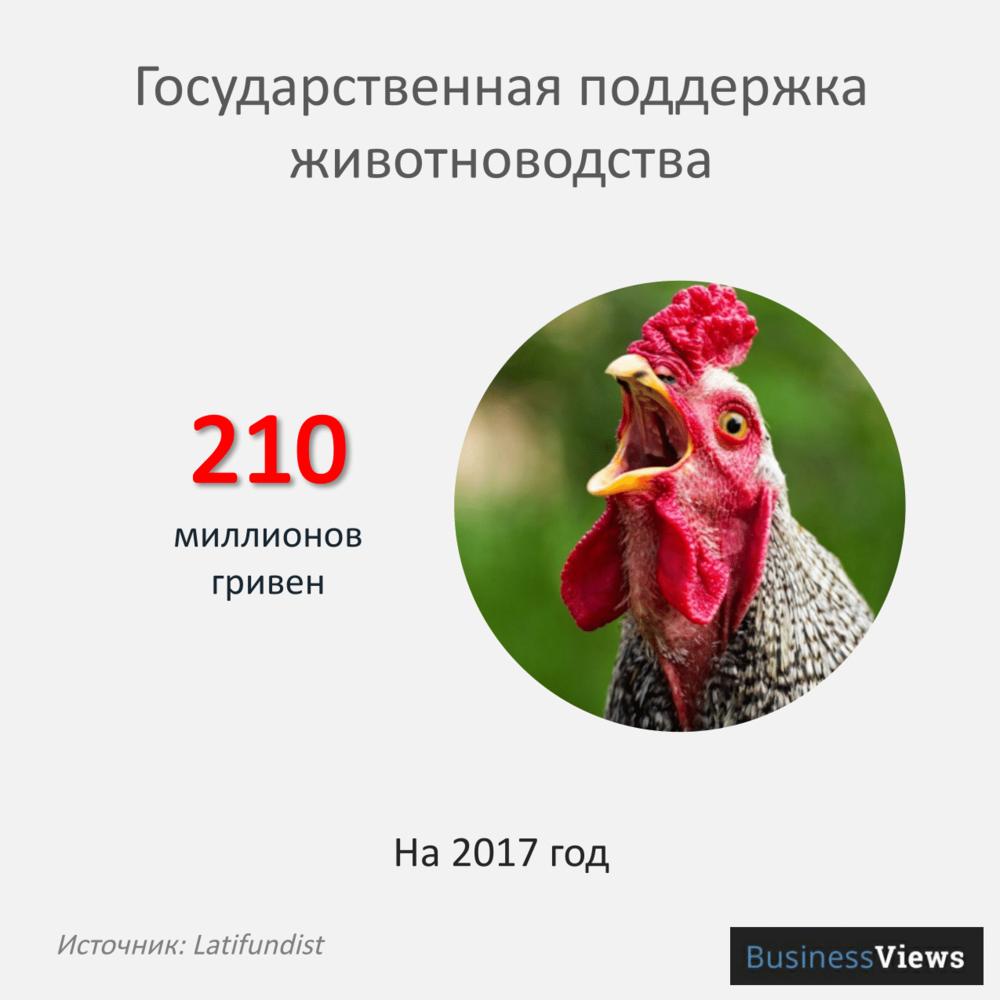 животноводство-12.png