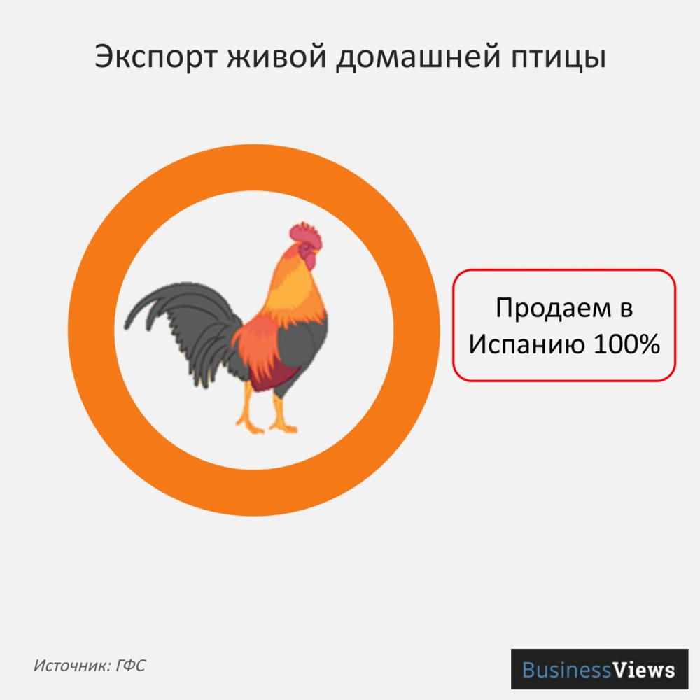 Экспорт живой домашней птицы