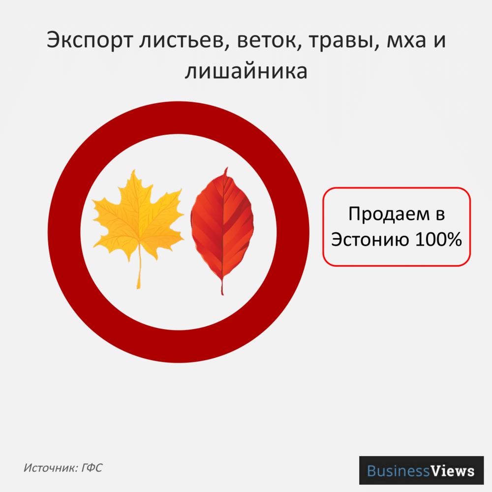 экспорт листьев