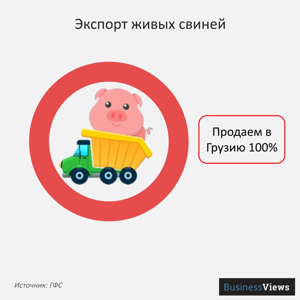 Экспорт живых свиней