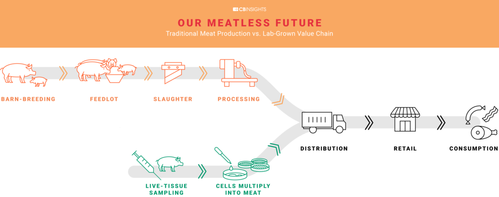 Traditional Meat Production vs. Lab-Grown Value Chain