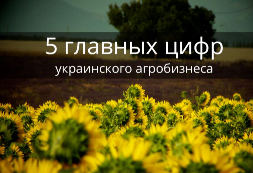 Агробизнес в Украине: 5 важных фактов