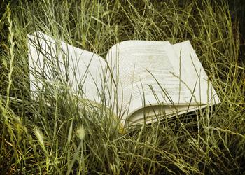 8 библиотек с книгами на английском, которые можно читать, не нарушая закон