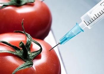 4 коротких факта о ГМО, которые тебя удивят