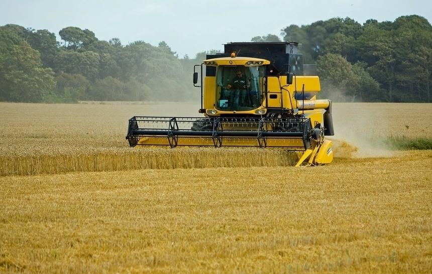 9 агротехнологій, які зроблять ваш бізнес прибутковішим