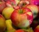 Цена на яблоко в Украине побила антирекорд последних лет. Чего ожидать от грядущего сезона?