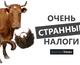 Налог на воробьев, коровий метеоризм и еще 11 странных сборов в пользу казны в разных государствах