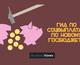 Зрада или перемога: гид по социальным выплатам по госбюджету-2017