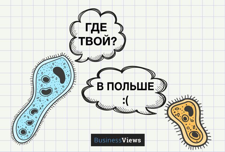 Что случилось с украинской наукой и как это исправить