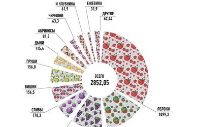 Весь украинский урожай — в одной инфографике