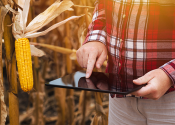 7 трендов о которых надо знать, если ты ищешь работу в агробизнесе