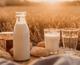20+ незвичайних питань та відповідей про молоко — все, що ти хотів знати, але не знав, у кого спитати