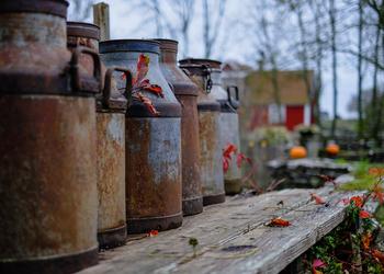 Деньги из мусора: зачем Швеции чужой хлам?