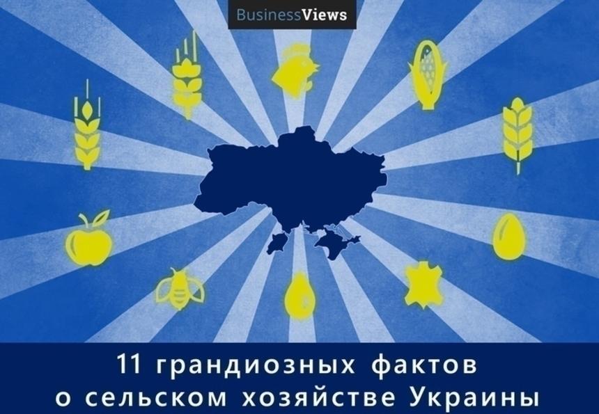 Как Украина обеспечивает другие страны продовольствием: 11 фактов