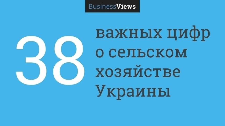 30+ важных цифр о сельском хозяйстве Украины