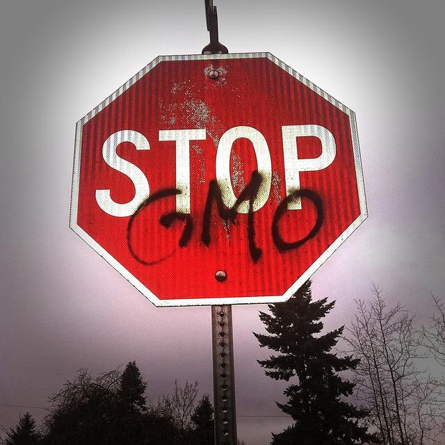 10 фактов о ГМО