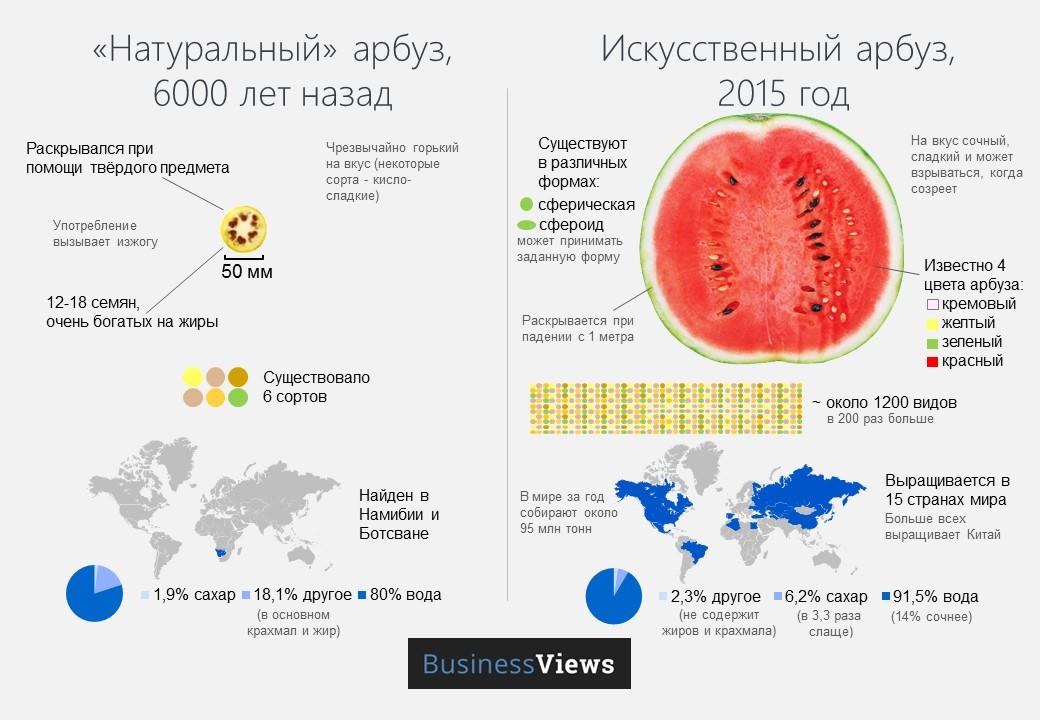 Самых-самых сортов арбузов | Fresher - Лучшее из